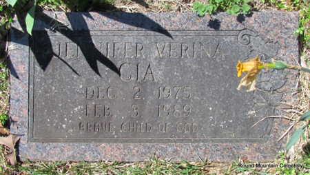 CIA, JENNIFER VERINA - Faulkner County, Arkansas | JENNIFER VERINA CIA - Arkansas Gravestone Photos