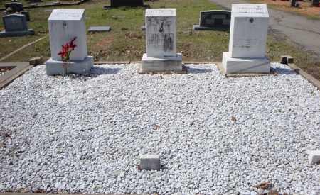 CLEMENTS FAMILY PLOT,  - Faulkner County, Arkansas    CLEMENTS FAMILY PLOT - Arkansas Gravestone Photos