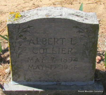 COLLIER, ALBERT L. (2 STONES) - Faulkner County, Arkansas   ALBERT L. (2 STONES) COLLIER - Arkansas Gravestone Photos