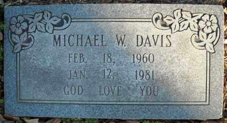 DAVIS, MICHAEL W. - Faulkner County, Arkansas | MICHAEL W. DAVIS - Arkansas Gravestone Photos
