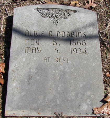 DOBBINS, ALICE REBECCA ANN - Faulkner County, Arkansas | ALICE REBECCA ANN DOBBINS - Arkansas Gravestone Photos