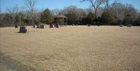 *FAITH CEMETERY OVERVIEW #2,  - Faulkner County, Arkansas    *FAITH CEMETERY OVERVIEW #2 - Arkansas Gravestone Photos