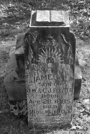 FOSTER, JAMES C. - Faulkner County, Arkansas | JAMES C. FOSTER - Arkansas Gravestone Photos