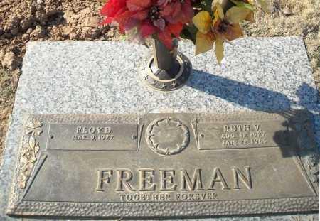 FREEMAN, FLOYD - Faulkner County, Arkansas | FLOYD FREEMAN - Arkansas Gravestone Photos