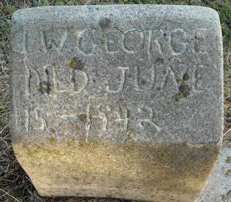 GEORGE, L.W. - Faulkner County, Arkansas | L.W. GEORGE - Arkansas Gravestone Photos