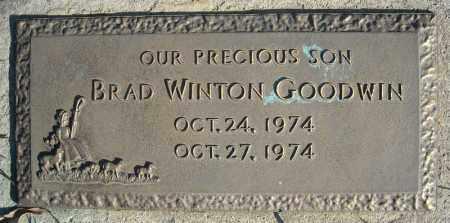 GOODWIN, BRAD WINTON - Faulkner County, Arkansas   BRAD WINTON GOODWIN - Arkansas Gravestone Photos