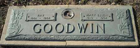 GOODWIN, RAY - Faulkner County, Arkansas | RAY GOODWIN - Arkansas Gravestone Photos