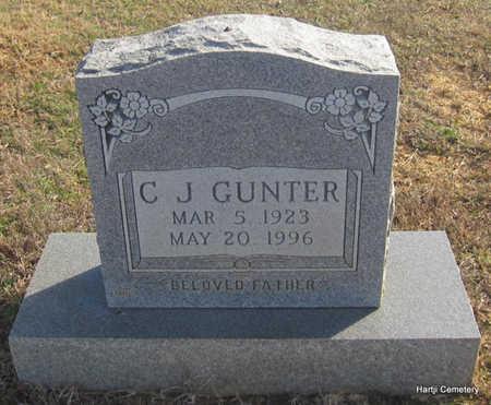 GUNTER, C.J. - Faulkner County, Arkansas | C.J. GUNTER - Arkansas Gravestone Photos