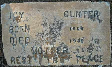 GUNTER, ICY - Faulkner County, Arkansas | ICY GUNTER - Arkansas Gravestone Photos