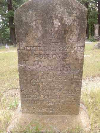 GUNTER, THOMAS WESLEY - Faulkner County, Arkansas | THOMAS WESLEY GUNTER - Arkansas Gravestone Photos