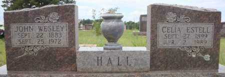 HALL, CELIA ESTELL - Faulkner County, Arkansas | CELIA ESTELL HALL - Arkansas Gravestone Photos