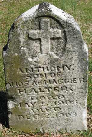 HALTER, ANTHONY - Faulkner County, Arkansas | ANTHONY HALTER - Arkansas Gravestone Photos