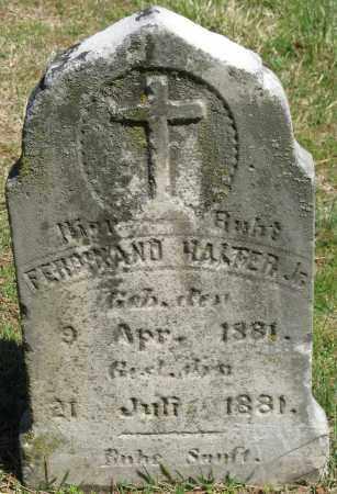 HALTER, JR., FERDINAND - Faulkner County, Arkansas   FERDINAND HALTER, JR. - Arkansas Gravestone Photos