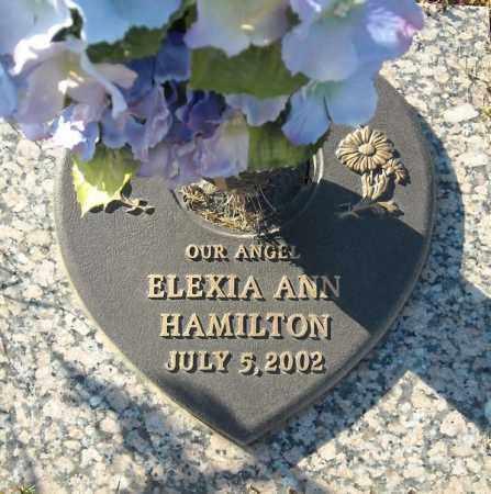 HAMILTON, ELEXIA ANN - Faulkner County, Arkansas | ELEXIA ANN HAMILTON - Arkansas Gravestone Photos