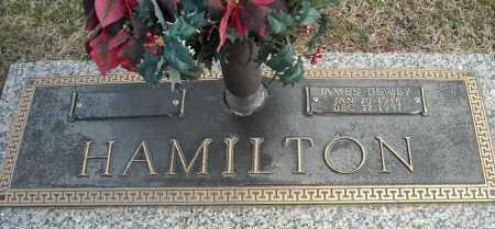 HAMILTON, JAMES DEWEY - Faulkner County, Arkansas | JAMES DEWEY HAMILTON - Arkansas Gravestone Photos