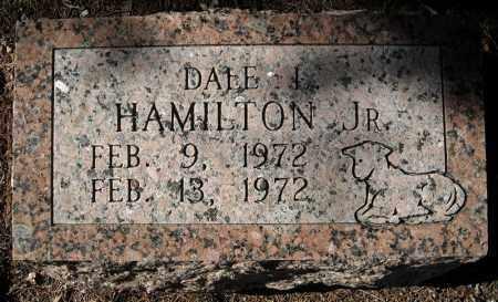 HAMILTON, JR., DALE L. - Faulkner County, Arkansas | DALE L. HAMILTON, JR. - Arkansas Gravestone Photos