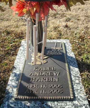 HARBIN, KALEB ANDREW - Faulkner County, Arkansas   KALEB ANDREW HARBIN - Arkansas Gravestone Photos