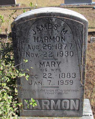 HARMON, MARY FRANCIS - Faulkner County, Arkansas | MARY FRANCIS HARMON - Arkansas Gravestone Photos
