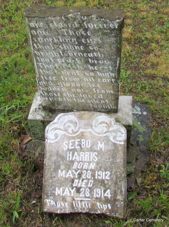 HARRIS, SEEBO M. - Faulkner County, Arkansas | SEEBO M. HARRIS - Arkansas Gravestone Photos