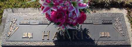 HARRIS, DELMA E. - Faulkner County, Arkansas | DELMA E. HARRIS - Arkansas Gravestone Photos