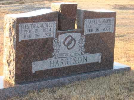JOHNSON HARRISON, LANETTA MARIE - Faulkner County, Arkansas | LANETTA MARIE JOHNSON HARRISON - Arkansas Gravestone Photos