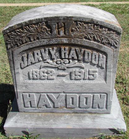 HAYDON, JARVY - Faulkner County, Arkansas | JARVY HAYDON - Arkansas Gravestone Photos