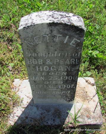 HOGAN, NETTIE - Faulkner County, Arkansas   NETTIE HOGAN - Arkansas Gravestone Photos