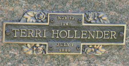 HOLLENDER, TERRI - Faulkner County, Arkansas | TERRI HOLLENDER - Arkansas Gravestone Photos