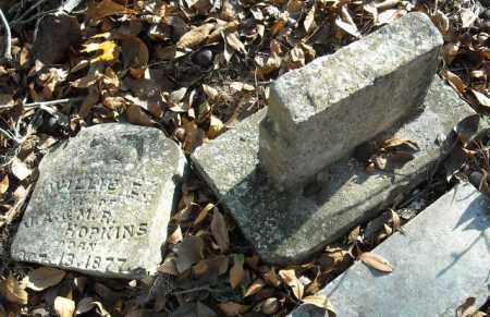 HOPKINS, WILLIE E. - Faulkner County, Arkansas   WILLIE E. HOPKINS - Arkansas Gravestone Photos