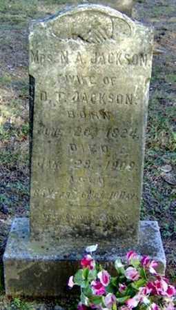 JACKSON, NANCY ADELINE - Faulkner County, Arkansas | NANCY ADELINE JACKSON - Arkansas Gravestone Photos