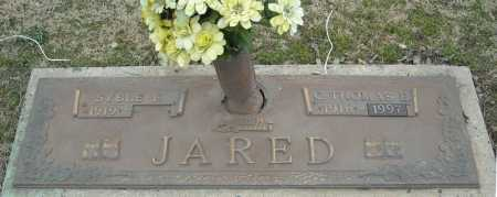 JARED, C. THOMAS E. - Faulkner County, Arkansas | C. THOMAS E. JARED - Arkansas Gravestone Photos