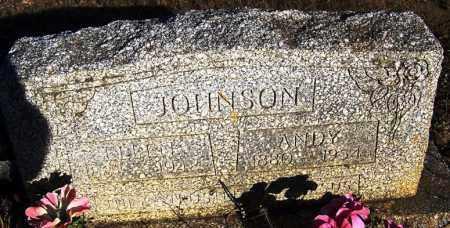 JOHNSON, ANDY - Faulkner County, Arkansas | ANDY JOHNSON - Arkansas Gravestone Photos
