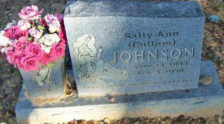 JOHNSON, SALLIE ANN - Faulkner County, Arkansas | SALLIE ANN JOHNSON - Arkansas Gravestone Photos