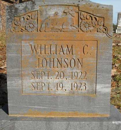 JOHNSON, WILLIAM C. - Faulkner County, Arkansas   WILLIAM C. JOHNSON - Arkansas Gravestone Photos