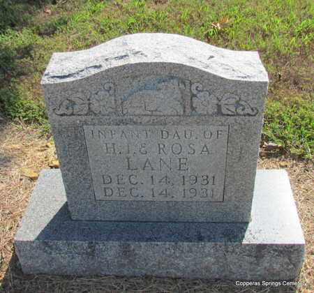 LANE, INFANT DAUGHTER (1931) - Faulkner County, Arkansas | INFANT DAUGHTER (1931) LANE - Arkansas Gravestone Photos