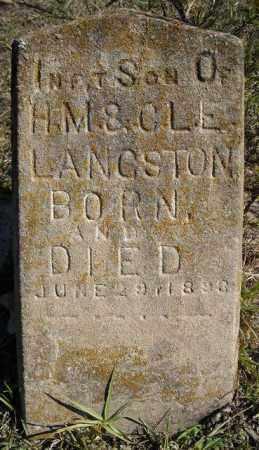 LANGSTON, INFANT SON - Faulkner County, Arkansas   INFANT SON LANGSTON - Arkansas Gravestone Photos