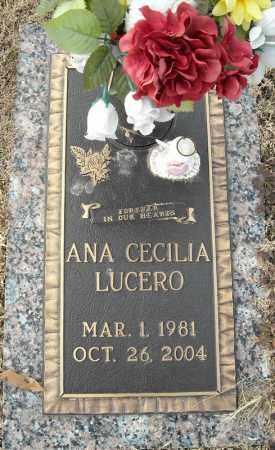 LUCERO, ANA CECILIA - Faulkner County, Arkansas | ANA CECILIA LUCERO - Arkansas Gravestone Photos