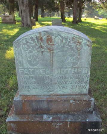 LYON, SALLIE - Faulkner County, Arkansas | SALLIE LYON - Arkansas Gravestone Photos