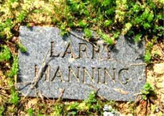 MANNING, LARRY - Faulkner County, Arkansas | LARRY MANNING - Arkansas Gravestone Photos
