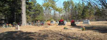 *MCGINTYTOWN OVERVIEW #1,  - Faulkner County, Arkansas |  *MCGINTYTOWN OVERVIEW #1 - Arkansas Gravestone Photos