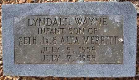 MERRITT, LYNDALL WAYNE - Faulkner County, Arkansas | LYNDALL WAYNE MERRITT - Arkansas Gravestone Photos