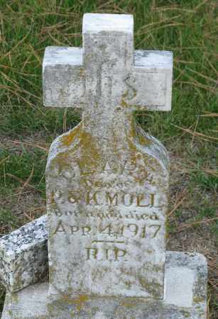 MOLL, CLARA - Faulkner County, Arkansas | CLARA MOLL - Arkansas Gravestone Photos