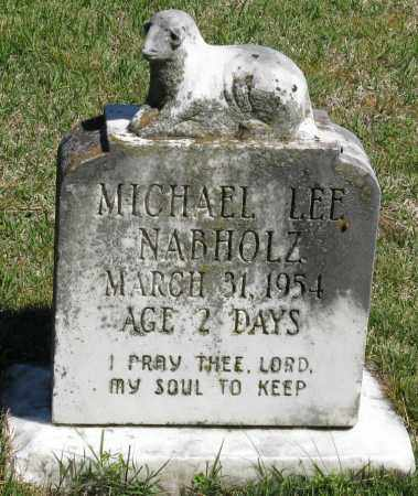 NABHOLZ, MICHAEL LEE - Faulkner County, Arkansas   MICHAEL LEE NABHOLZ - Arkansas Gravestone Photos
