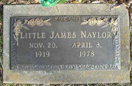 NAYLOR, LITTLE JAMES - Faulkner County, Arkansas | LITTLE JAMES NAYLOR - Arkansas Gravestone Photos