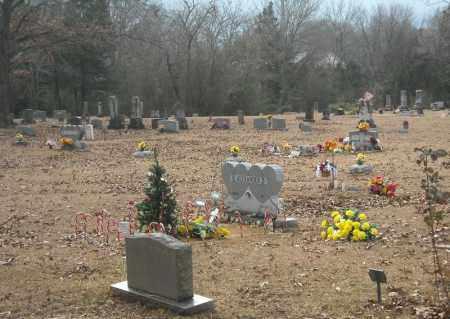 *NEW LIBERTY OVERVIEW 2,  - Faulkner County, Arkansas |  *NEW LIBERTY OVERVIEW 2 - Arkansas Gravestone Photos