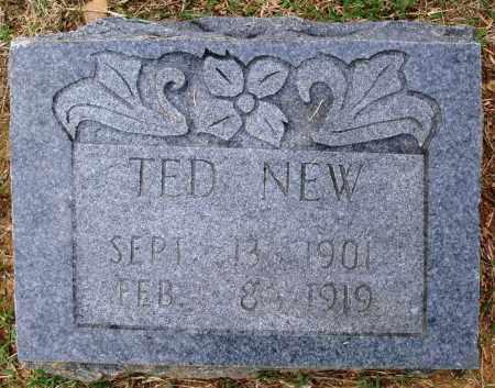 NEW, TED - Faulkner County, Arkansas | TED NEW - Arkansas Gravestone Photos