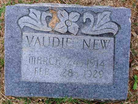 NEW, VAUDIE - Faulkner County, Arkansas | VAUDIE NEW - Arkansas Gravestone Photos