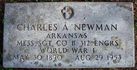 NEWMAN (VETERAN WWI), CHARLES A - Faulkner County, Arkansas | CHARLES A NEWMAN (VETERAN WWI) - Arkansas Gravestone Photos