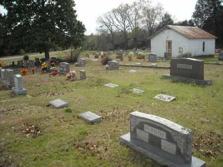 *OAKLAND OVERVIEW 1,  - Faulkner County, Arkansas |  *OAKLAND OVERVIEW 1 - Arkansas Gravestone Photos
