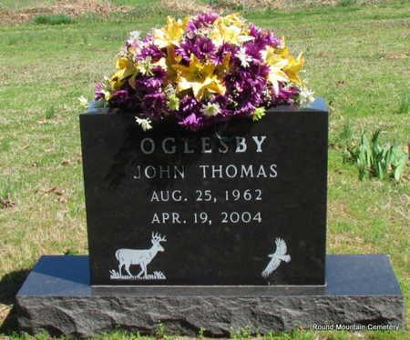 OGLESBY, JOHN THOMAS - Faulkner County, Arkansas | JOHN THOMAS OGLESBY - Arkansas Gravestone Photos